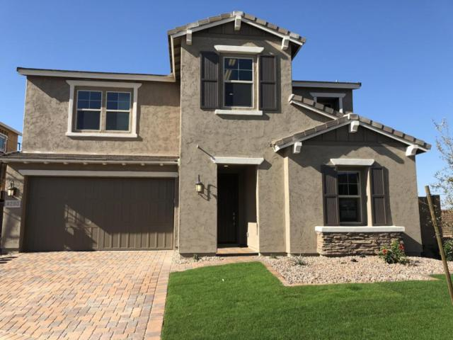 4280 S Thistle Place, Chandler, AZ 85248 (MLS #5698196) :: Group 46:10