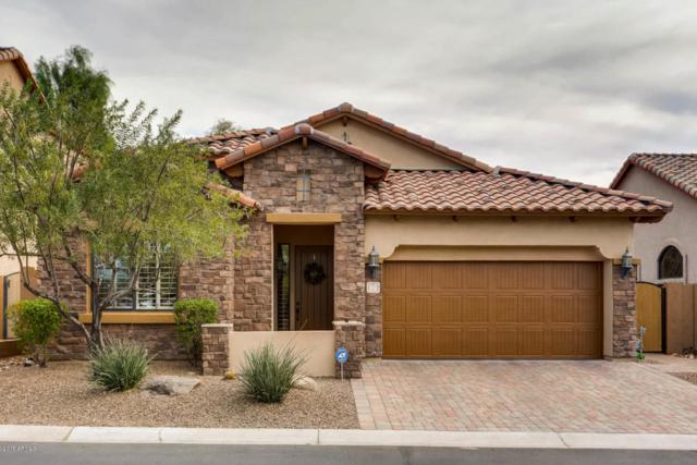 7227 E Nathan Street, Mesa, AZ 85207 (MLS #5698200) :: Group 46:10