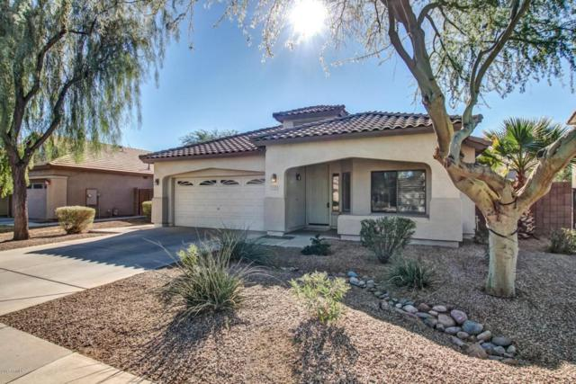 1155 E Locust Drive, Chandler, AZ 85286 (MLS #5698237) :: Group 46:10