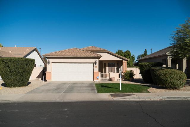 4242 E Megan Street, Gilbert, AZ 85295 (MLS #5698247) :: Group 46:10