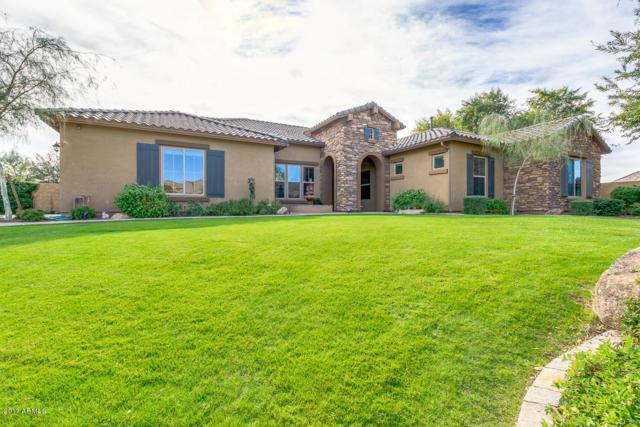 7043 E Ivyglen Circle, Mesa, AZ 85207 (MLS #5698261) :: Group 46:10