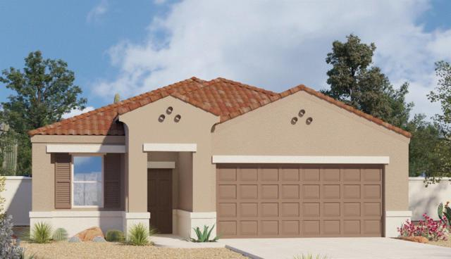 42074 W Lunar Street, Maricopa, AZ 85138 (MLS #5698279) :: Group 46:10