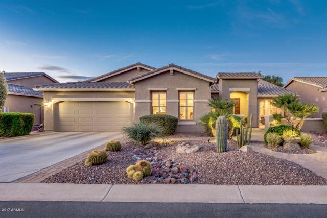 42754 W Sandpiper Drive, Maricopa, AZ 85138 (MLS #5698309) :: Yost Realty Group at RE/MAX Casa Grande