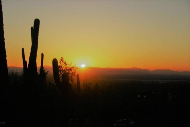 3759 N Hawes Road, Mesa, AZ 85207 (MLS #5698361) :: The Kenny Klaus Team