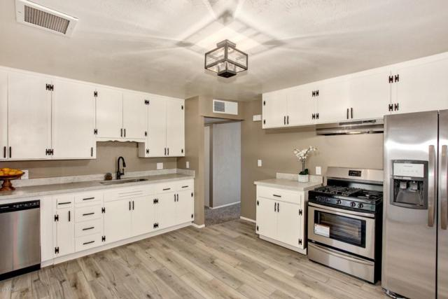 3114 W Dahlia Drive, Phoenix, AZ 85029 (MLS #5698393) :: Desert Home Premier