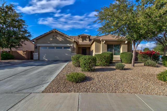 11554 N 164TH Avenue, Surprise, AZ 85388 (MLS #5698396) :: Desert Home Premier
