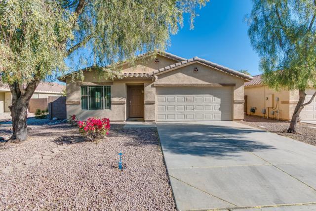 13162 W Clarendon Avenue, Litchfield Park, AZ 85340 (MLS #5698398) :: Desert Home Premier