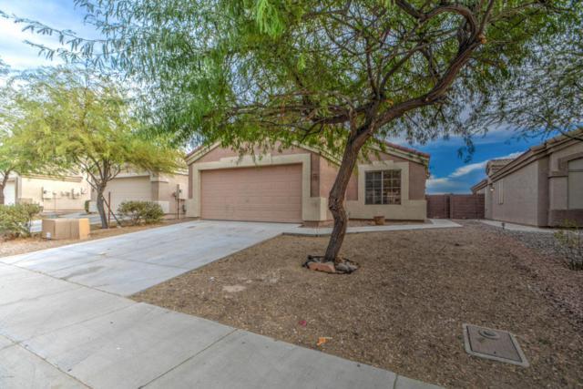 23189 W Ashleigh Marie Drive, Buckeye, AZ 85326 (MLS #5698446) :: Desert Home Premier