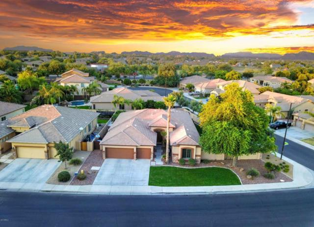 3984 E Meadowview Drive, Gilbert, AZ 85298 (MLS #5698454) :: The Kenny Klaus Team