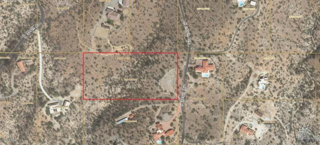 0 N 295th Avenue, Wickenburg, AZ 85390 (MLS #5698482) :: Brett Tanner Home Selling Team