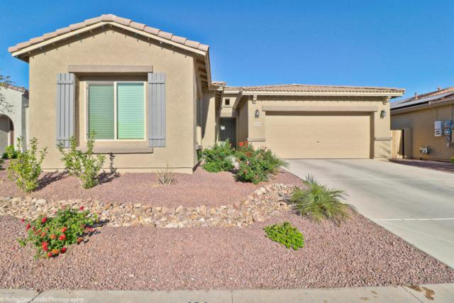 18056 W Tasha Drive, Surprise, AZ 85388 (MLS #5698508) :: Kortright Group - West USA Realty