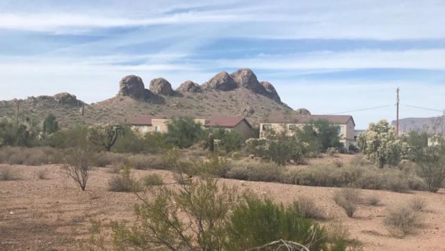 5910 S Kings Ranch Road, Gold Canyon, AZ 85118 (MLS #5698547) :: The Kenny Klaus Team
