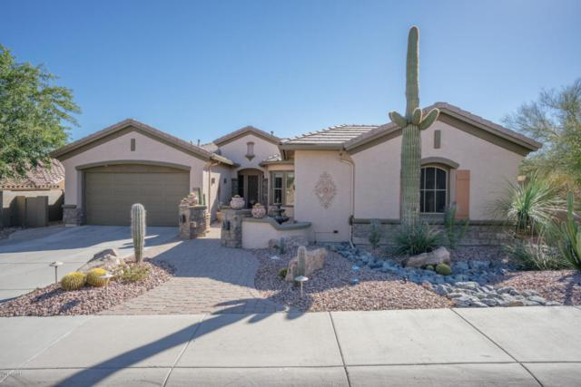 38717 N Red Tail Lane, Anthem, AZ 85086 (MLS #5698597) :: 10X Homes