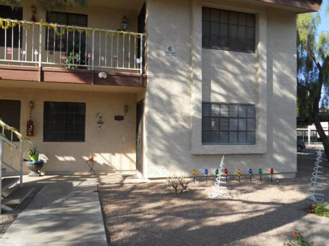 533 W Guadalupe Road #1049, Mesa, AZ 85210 (MLS #5698634) :: The Kenny Klaus Team
