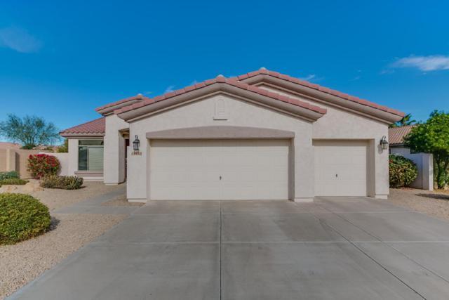 14682 W Catalina Drive, Goodyear, AZ 85395 (MLS #5698669) :: Kortright Group - West USA Realty