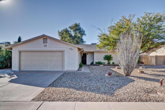 33 W Hillside Street, Mesa, AZ 85201 (MLS #5698753) :: The Kenny Klaus Team