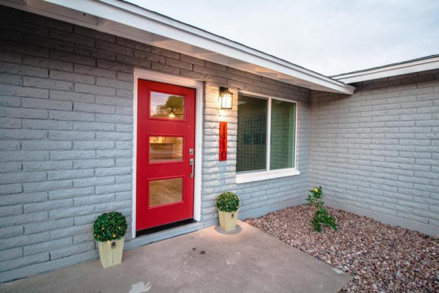 1410 W Palomino Drive, Chandler, AZ 85224 (MLS #5698758) :: The Kenny Klaus Team