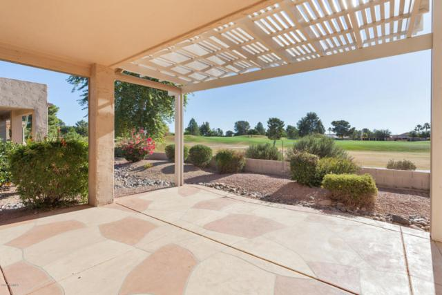 17625 N Goldwater Drive, Surprise, AZ 85374 (MLS #5698808) :: Desert Home Premier