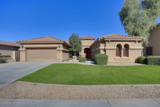 15352 W Roma Avenue, Goodyear, AZ 85395 (MLS #5698819) :: Kortright Group - West USA Realty