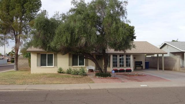204 E Fordham Drive, Tempe, AZ 85283 (MLS #5698864) :: Cambridge Properties