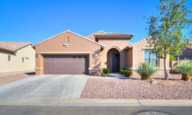 5213 N Gila Trail Drive, Eloy, AZ 85131 (MLS #5698911) :: Yost Realty Group at RE/MAX Casa Grande