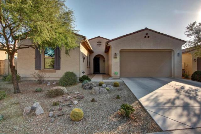 15235 S 180TH Avenue, Goodyear, AZ 85338 (MLS #5699027) :: Brett Tanner Home Selling Team