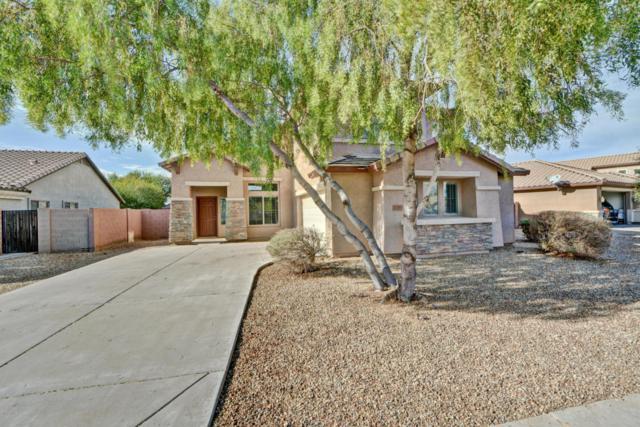 11365 W Lincoln Street, Avondale, AZ 85323 (MLS #5699051) :: Brett Tanner Home Selling Team