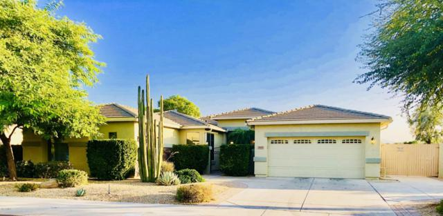 14469 W Edgemont Avenue, Goodyear, AZ 85395 (MLS #5699055) :: Kortright Group - West USA Realty