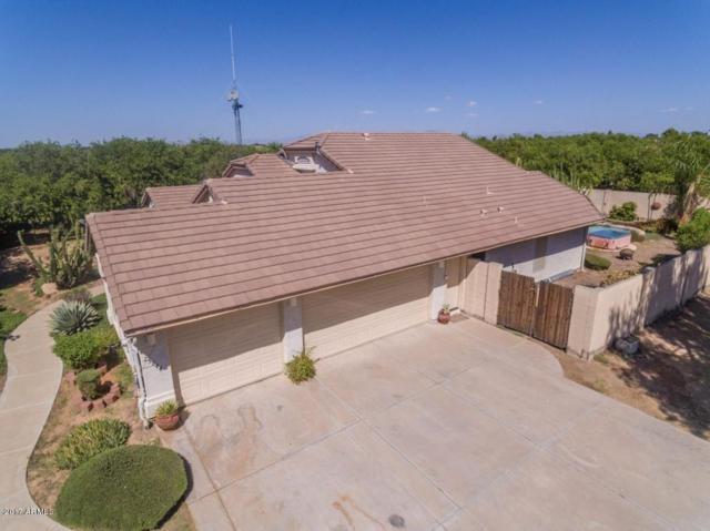 25844 S 205TH Street, Queen Creek, AZ 85142 (MLS #5699151) :: Brett Tanner Home Selling Team