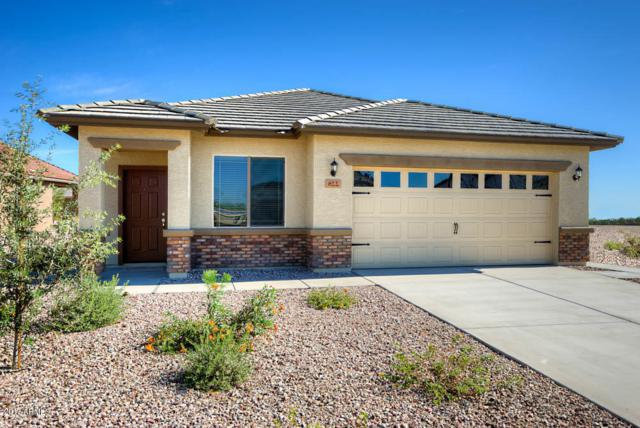 361 S 223RD Lane, Buckeye, AZ 85326 (MLS #5699179) :: 10X Homes