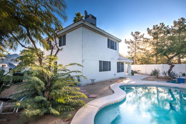 3389 W Barcelona Drive, Chandler, AZ 85226 (MLS #5699242) :: 10X Homes