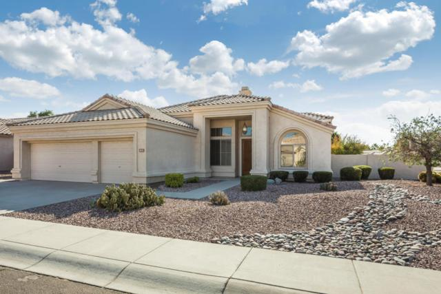1835 W Oriole Way, Chandler, AZ 85286 (MLS #5699247) :: Brett Tanner Home Selling Team
