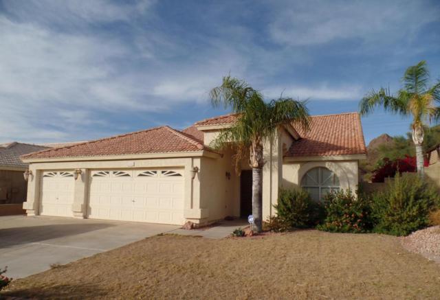 6126 W Fallen Leaf Lane, Glendale, AZ 85310 (MLS #5699270) :: 10X Homes