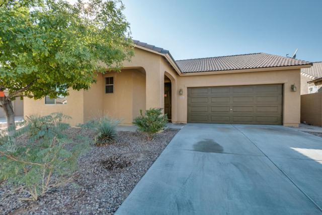 18264 N Arbor Drive, Maricopa, AZ 85138 (MLS #5699279) :: Revelation Real Estate