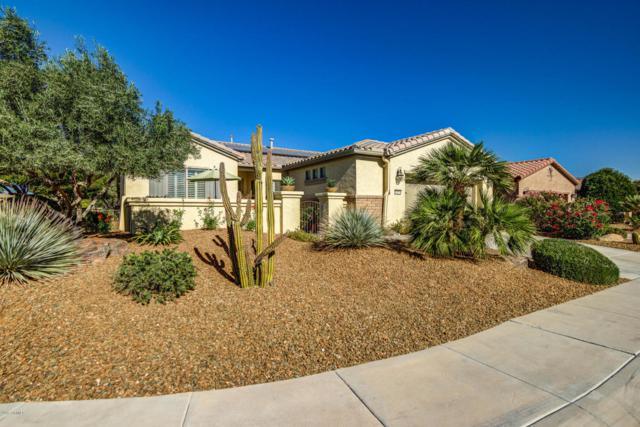 13070 W Running Deer Trail, Peoria, AZ 85383 (MLS #5699303) :: 10X Homes