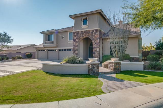 5524 N Sierra Hermosa Court, Litchfield Park, AZ 85340 (MLS #5699307) :: Kortright Group - West USA Realty