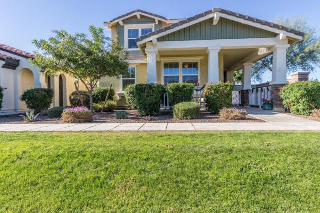 15388 W Columbine Drive, Surprise, AZ 85379 (MLS #5699313) :: Brett Tanner Home Selling Team