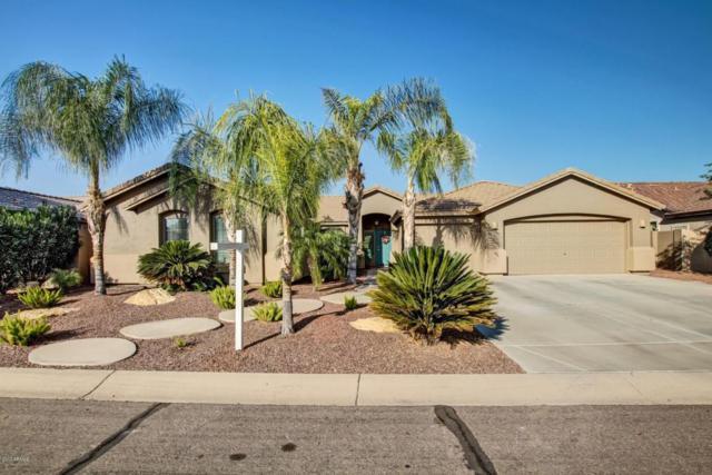 384 W Chuckwagon Lane, San Tan Valley, AZ 85143 (MLS #5699319) :: The Bill and Cindy Flowers Team