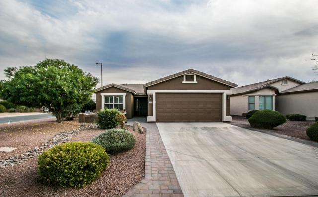 3549 E Hazeltine Way, Chandler, AZ 85249 (MLS #5699350) :: Brett Tanner Home Selling Team
