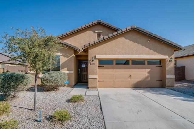 7343 S 253RD Drive, Buckeye, AZ 85326 (MLS #5699351) :: Kortright Group - West USA Realty