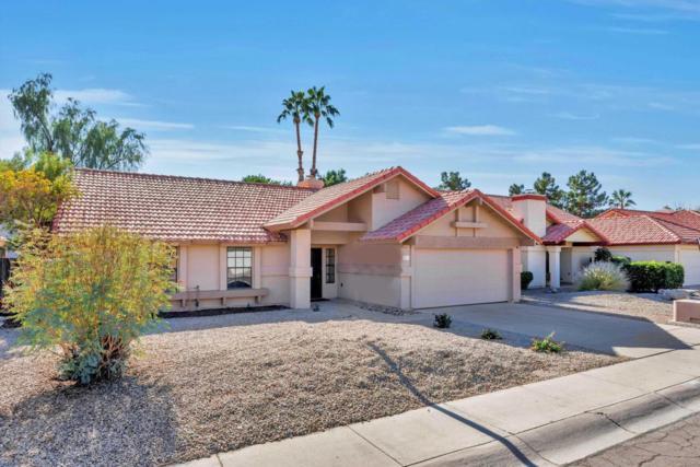 7203 W Mcrae Way, Glendale, AZ 85308 (MLS #5699403) :: Brett Tanner Home Selling Team
