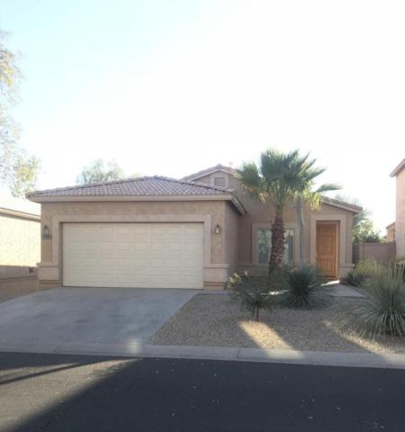 1119 E Country Crossing Way, San Tan Valley, AZ 85143 (MLS #5699404) :: Revelation Real Estate