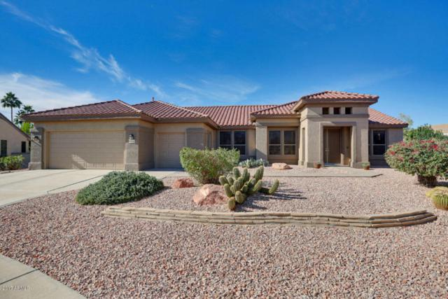 18358 N Kokopelli Court, Surprise, AZ 85374 (MLS #5699415) :: Brett Tanner Home Selling Team