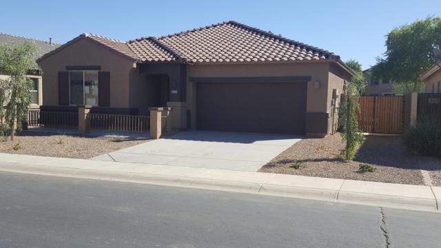 43872 W Caven Drive, Maricopa, AZ 85138 (MLS #5699424) :: Revelation Real Estate