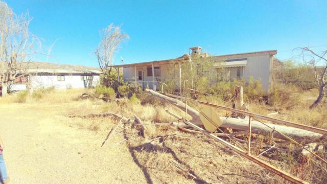 3925 S Cooley Ranch Road, Winkelman, AZ 85192 (MLS #5699471) :: Revelation Real Estate