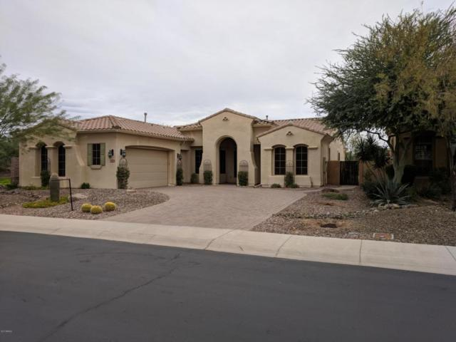 29073 N 122ND Drive, Peoria, AZ 85383 (MLS #5699475) :: My Home Group
