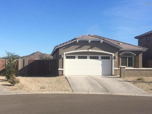 27333 N 75TH Drive, Peoria, AZ 85383 (MLS #5699477) :: Kortright Group - West USA Realty