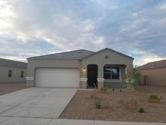 28945 N Tsavorite Road, San Tan Valley, AZ 85143 (MLS #5699479) :: The Bill and Cindy Flowers Team