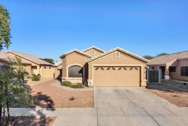 8122 W Preston Lane, Phoenix, AZ 85043 (MLS #5699485) :: 10X Homes