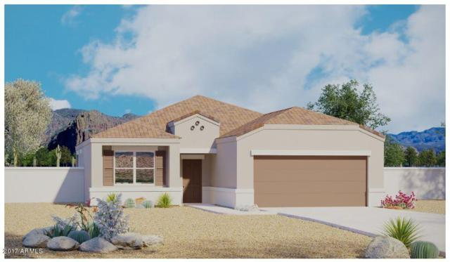11351 E Sunflower Court, Florence, AZ 85132 (MLS #5699491) :: Kortright Group - West USA Realty